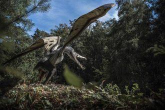 Un rendu présentant un Ptérosaure