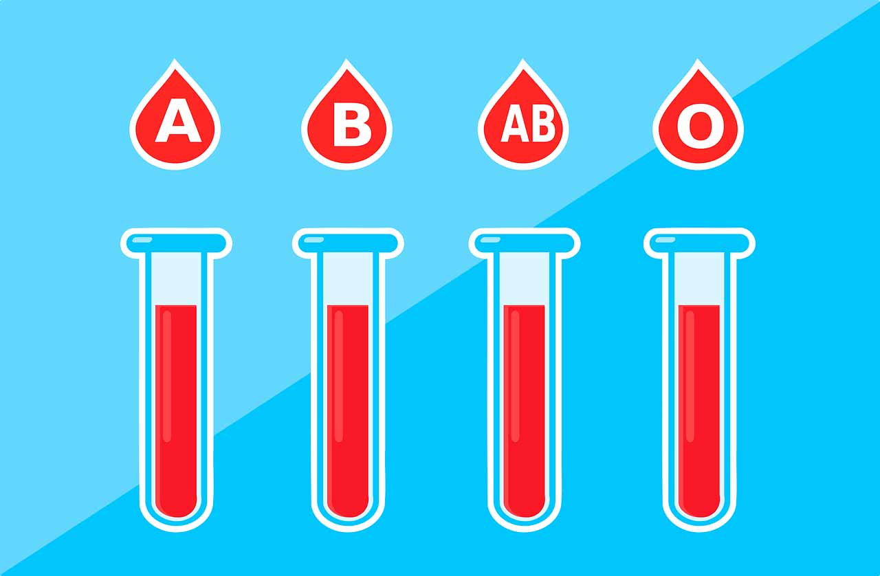 Des fioles symbolisant les différents groupes sanguins existants