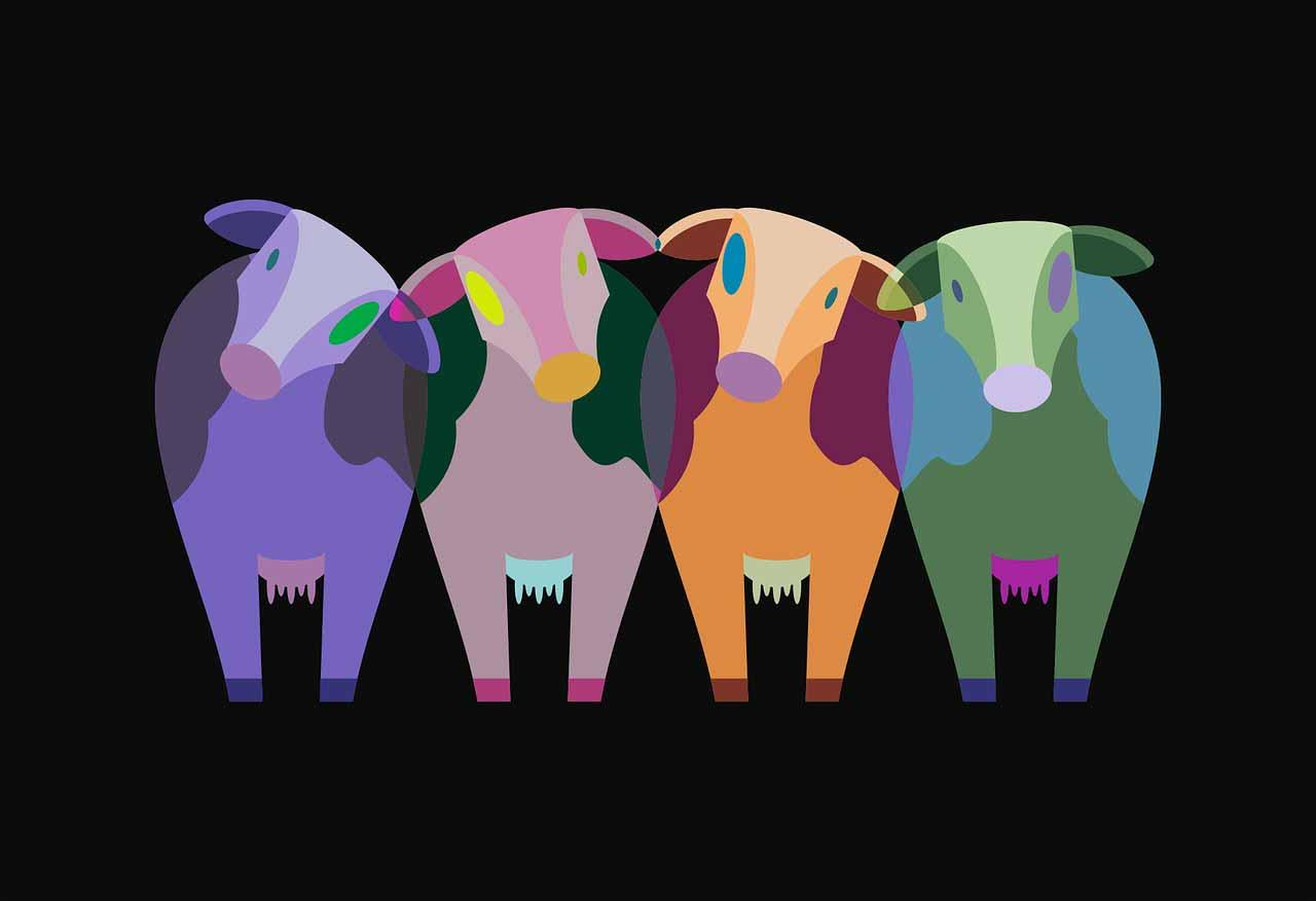 Une illustration représentant plusieurs vaches à côté les unes des autres