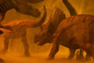 L'image d'un tricératops
